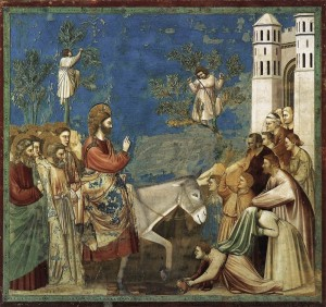 domenicadellepalme-giotto